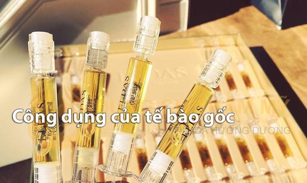 cong-dung-cua-te-bao-goc